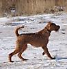 Hershey 01-2012 040